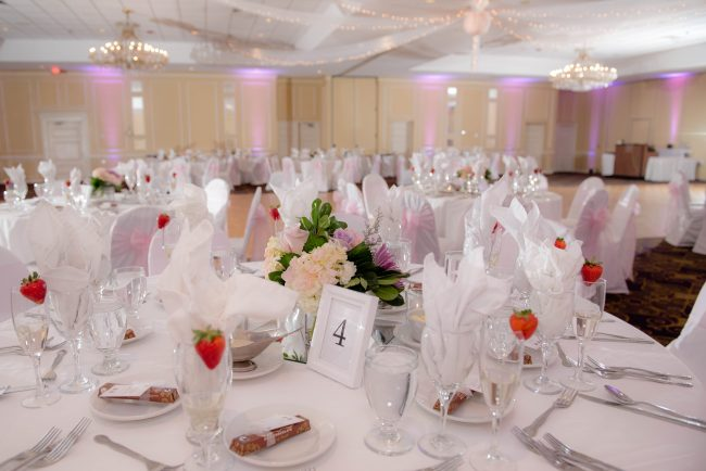 Nashua Radisson Wedding